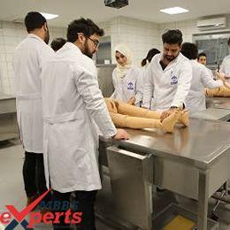 batumi shota rustaveli state university hospital training