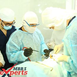 bogomolets national medical university hospital training