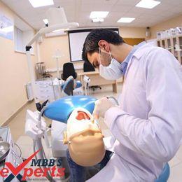 caucasus international university practical training