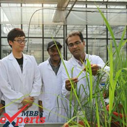 China MBBS Admission - MBBSExperts