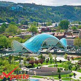 european university tbilisi city