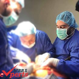 MBBS Admission in Georgia - MBBSExperts