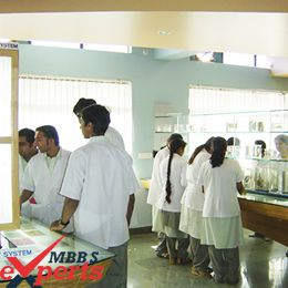 MBBS From India - MBBSExperts