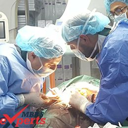 Medical Education in Georgia - MBBSExperts