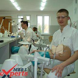 medical university of gdansk practical training - MBBSExperts