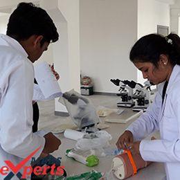 new vision university practical training