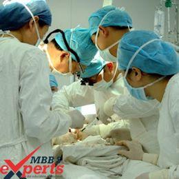 v.n karazin kharkiv national university hospital training