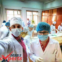 v.n karazin kharkiv national university practical training