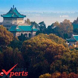 Wuhan University Building - MBBSExperts