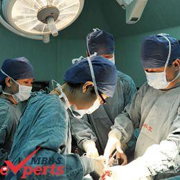 Zhejiang University Hospital Training - MBBSExperts