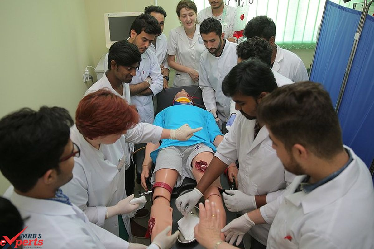MBBS Experts- Photo Gallery-266