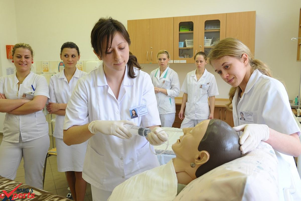 MBBS Experts- Photo Gallery-339