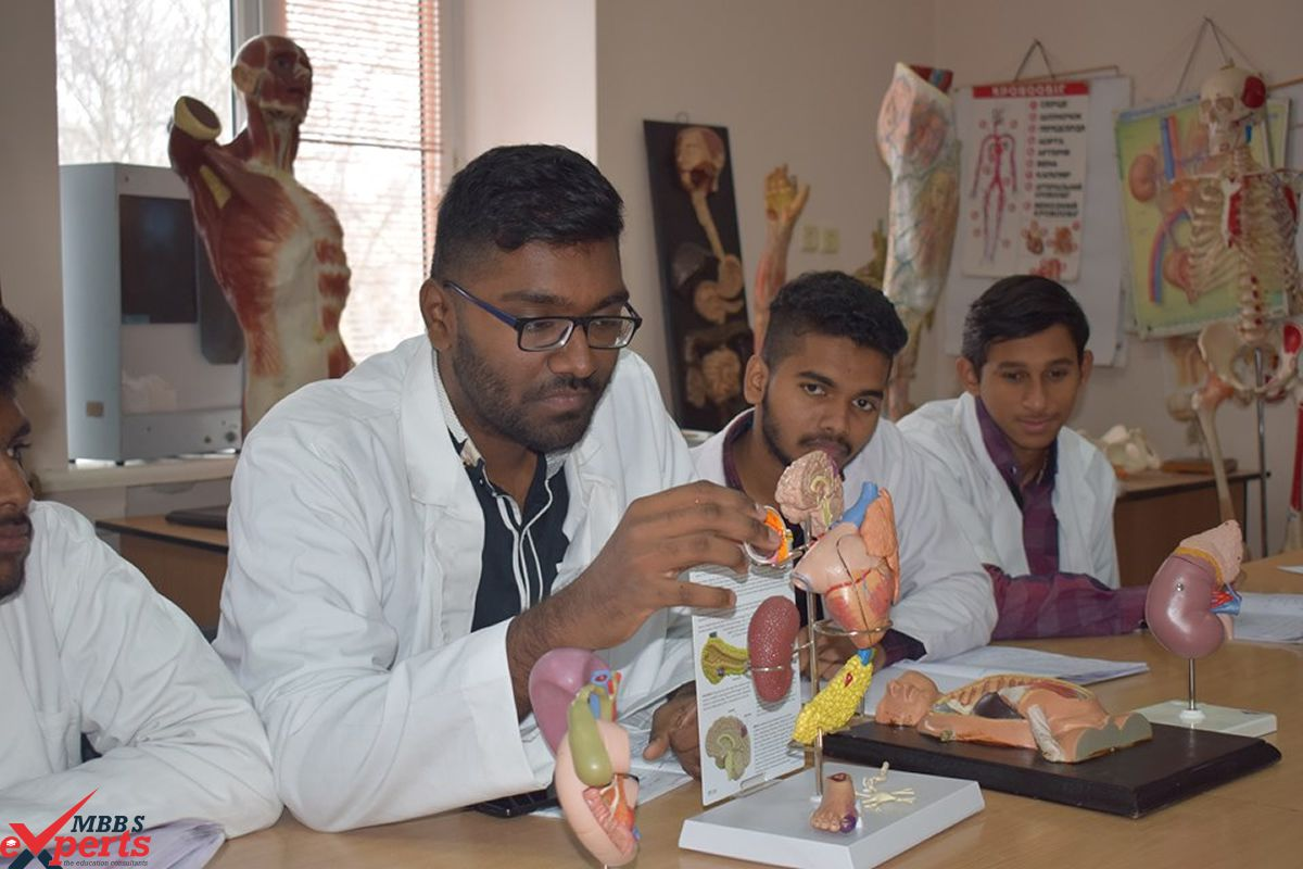 MBBS Experts- Photo Gallery-69