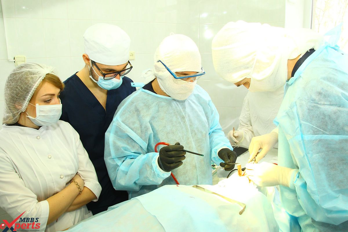 MBBS Experts- Photo Gallery-77